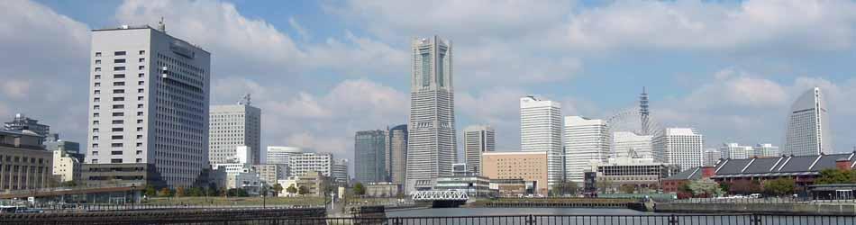 横浜国際税理士法人は地域に根ざし、世界へと羽ばたく起業を応援します。
